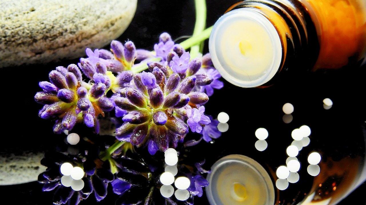 homeopathy purple flower naturopathic